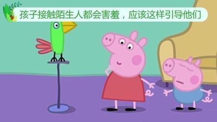 听到鹦鹉学佩奇说脏话, 你就知道孩子的脏话是从哪里学的了, 孩子还是妈妈带比较好