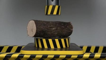 碗口粗的木头遇上液压机会发生什么? 压下的瞬间以为放的是甘蔗!