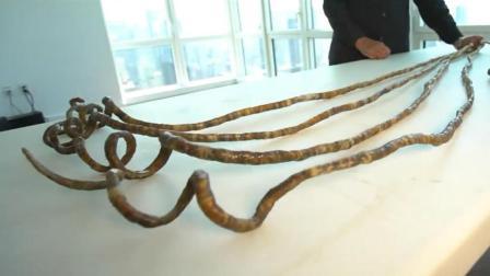 切割最长的指甲, 单手长度6.15米, 剪断后老人哭了