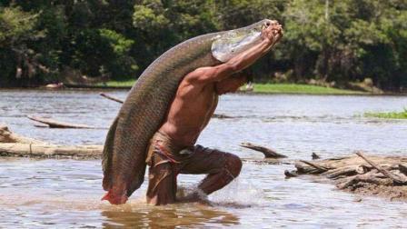 生活一亿年, 被评为全球最笨最大淡水鱼, 笨到靠政府保护才不灭绝