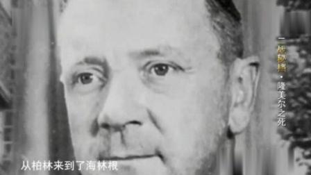 隆美尔没有参与暗杀希特勒计划, 却因此自杀, 其实还有一个鲜为人知的原因