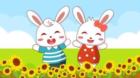 兔小贝儿歌  向日葵
