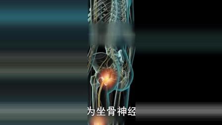 3D視角! 脊椎硬膜外麻醉穿刺原來這么神奇