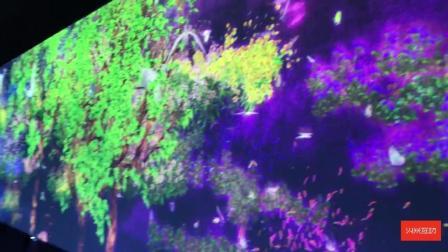 超真实森林主题墙面投影-火米互动推荐
