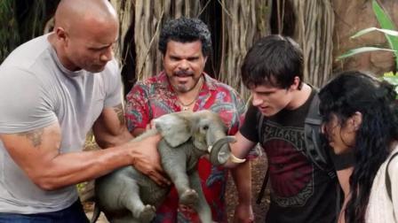 一家人误闯神秘岛, 这里蝴蝶比老鹰还大, 而大象竟比小狗还小!