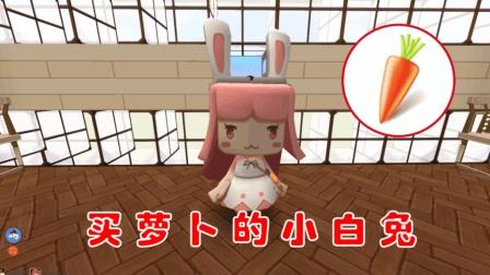 迷你世界江叔拍电影: 买胡萝卜的小白兔