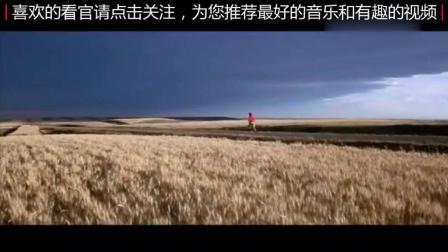 《追梦赤子心》Gala乐队原唱, 典型的歌红人不红