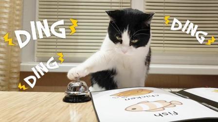 如果猫咪去到餐厅, 它会点哪种美食呢? 一起来看看吧!