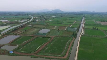 鄂州市鄂城区推动产业融合 助力乡村振兴