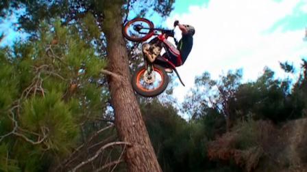 牛人骑摩托车的技术真是牛上天了, 居然可以爬树!