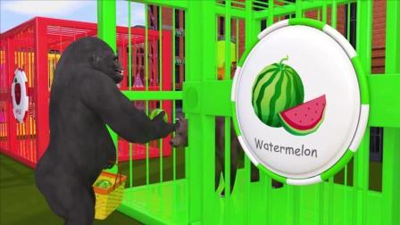 益智: 色彩启蒙, 和猩猩一起玩水果拼图游戏识颜色学英语