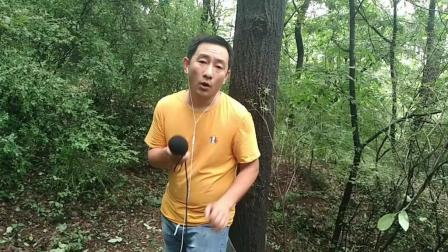 乐农民歌手歌声翻唱《丁香花》, 这么好听确定是农民吗? 我服了