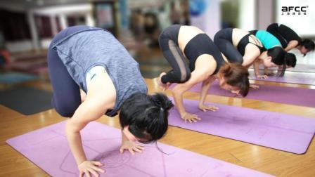 上海体适能-哈他瑜伽视频学习