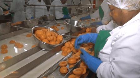 实拍杏仁罐头是如何制成的, 看后想吃吗?