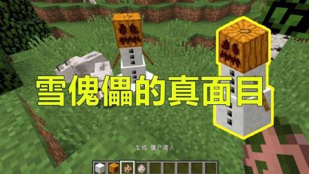 我的世界 Minecraft 关于雪傀儡的7个秘密, 一定有你不知道的
