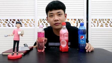 """试喝来自三个国家的""""特色饮料"""", 混合到一块还能喝吗"""