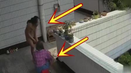 幸亏阳台有监控, 不然主人永远看不到这画面!