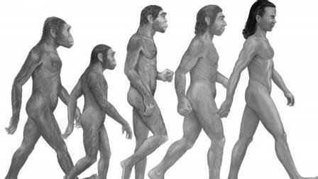 人类的身高会越来越高吗? 答案你肯定猜错了!