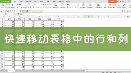 Excel技巧: 快速移动表格中的行和列!
