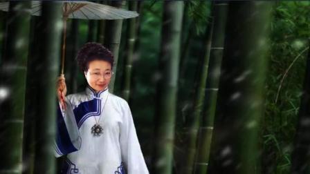 竹韵音画《雨竹林》