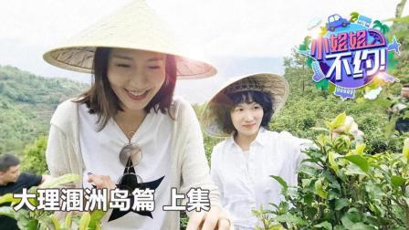 《小姐姐不约》钢铁小姐姐云南变形记, 茶山上演美食神操作!
