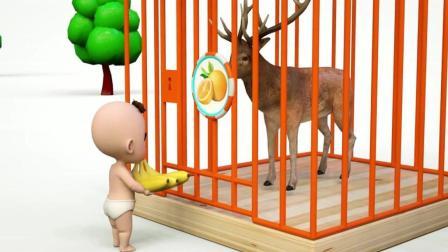 益智: 颜色启蒙, 萌宝给奶牛狗熊等动物送水果学颜色