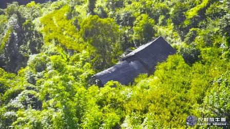 航拍贵州大山里的一户人家, 一位得道高深的老人这里隐居