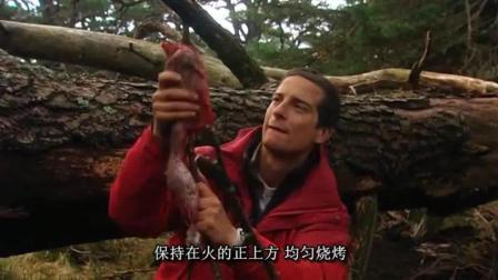 贝爷在苏格兰, 这里的野兔很容易抓啊, 美滋滋烤野兔吃!