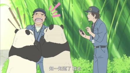 白熊咖啡厅:熊猫觉得半田先生的便当,就要升级了!