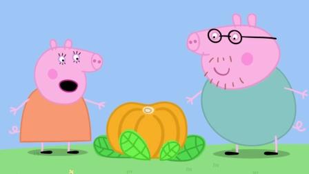 乐豆简笔画: 猪爸爸和猪妈妈看到一个大南瓜