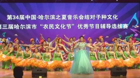 第三届农民文化节舞蹈伴舞