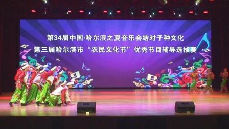 第三届农民文化节舞蹈表演