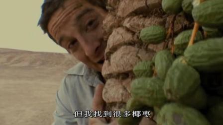 贝爷看到好吃的椰枣, 两三下就爬上超难爬的椰枣树, 抱着树干就开吃