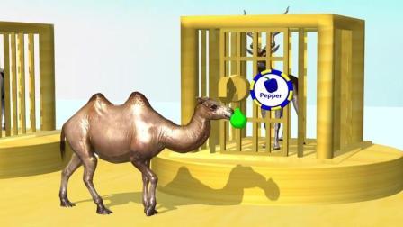 益智: 颜色启蒙, 骆驼奶牛学动物名称, 和山羊吃水果识颜色