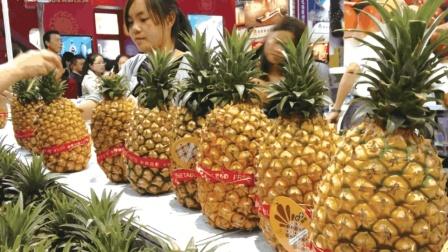 智多猩 菠萝和凤梨到底有什么区别  为什么价格相差那么多?