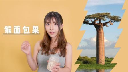 入江闪闪: 长在树上的面包, 烤一烤就松软香脆? 闪闪带你试吃猴面包树果实