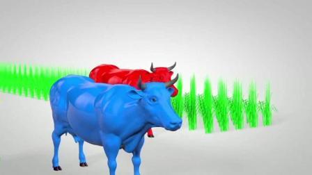 亲子益智动画宝宝英语早教, 打开笼子喂牛吃草, 变成不同颜色的牛