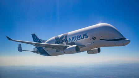 超级大白鲸首飞回顾