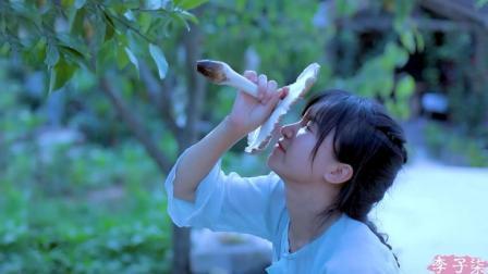 李子柒古香古食 第一季 甚于肉味的治愈美食 带些雨露的清甜 鸡枞菌