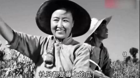 经典老歌! 1962年原版《社员都是向阳花》60年代广为传唱的群众歌曲
