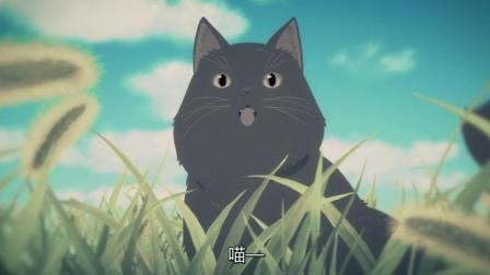 【新海诚】她和她的猫