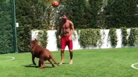 梅西戏耍他的狗