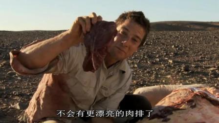 贝爷: 这骆驼肉看上去就很好吃啊!