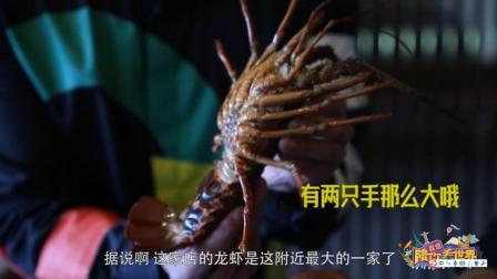 伊豆专属伊势龙虾 刺身酱汤随你挑