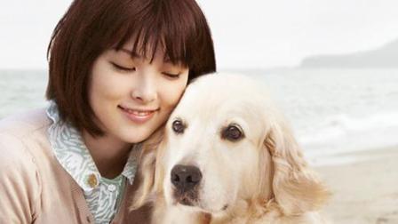 《狗狗与我的十个约定》养狗的人就是从平淡中获得成长
