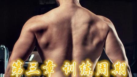 【智练】13中级阶段复合型动作训练周期举例
