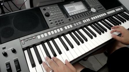 电子琴演奏-芦花