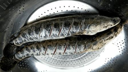 黑鱼这样的做法真美味, 一次煮两条, 汤真好喝