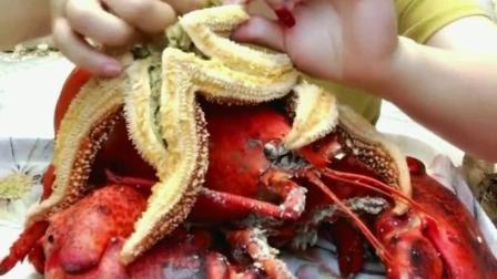盐焗海星美食小吃, 味道超级的鲜美, 你吃过这样的美食吗