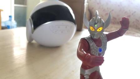 腾飞说玩具06 奥特曼发光扭泰罗奥特曼组装展示